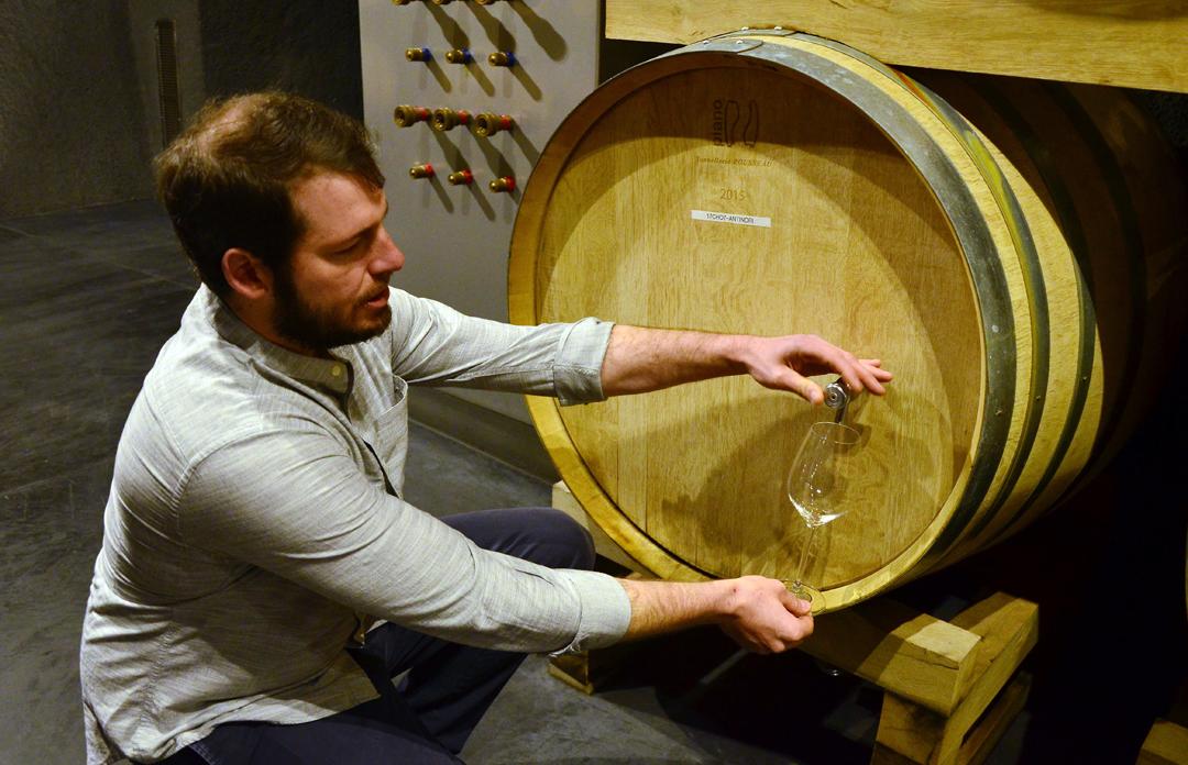 Italics Winegrowers Napa-3.jpg