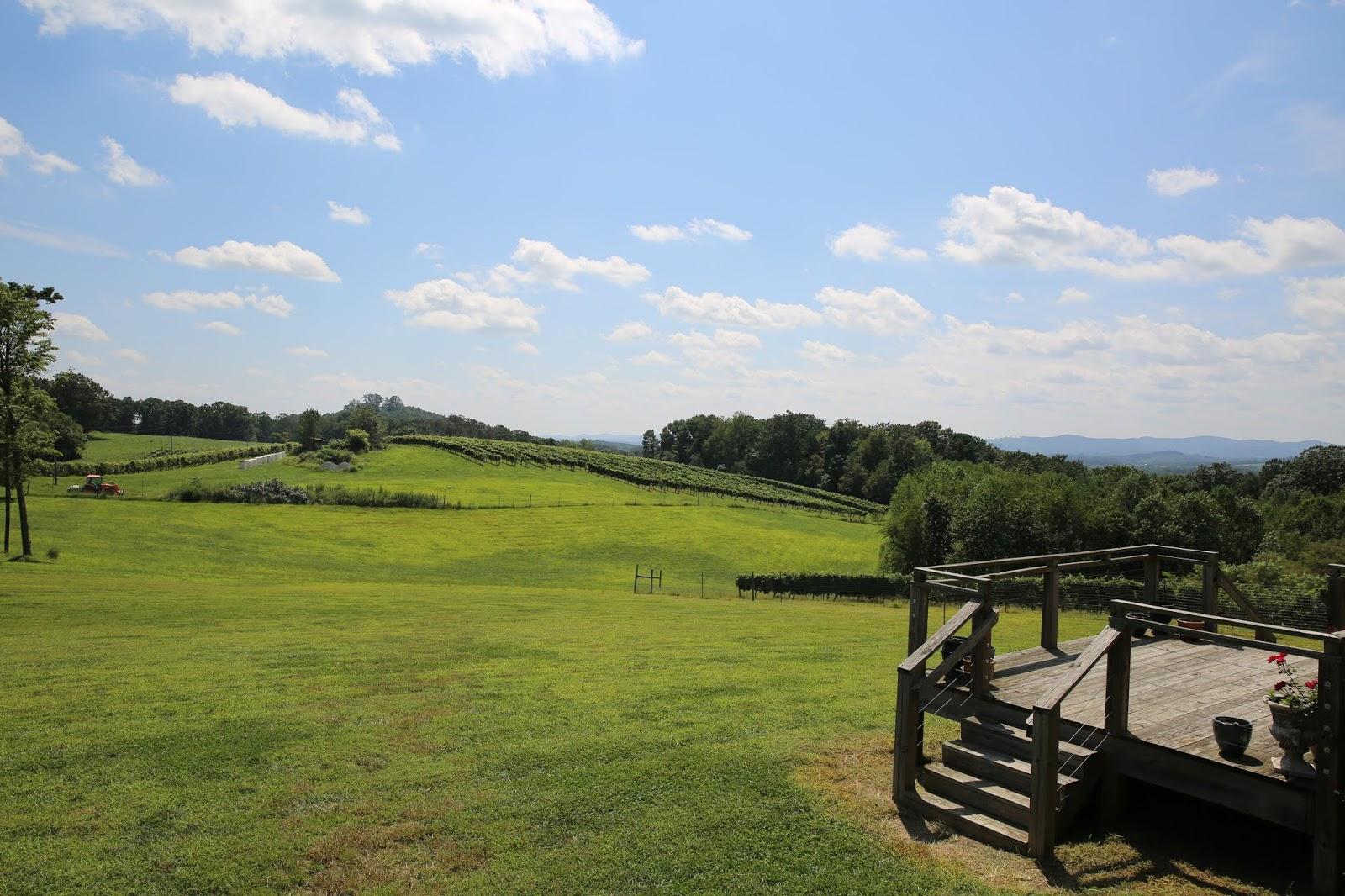 Dobbins Creek Vineyards.JPG
