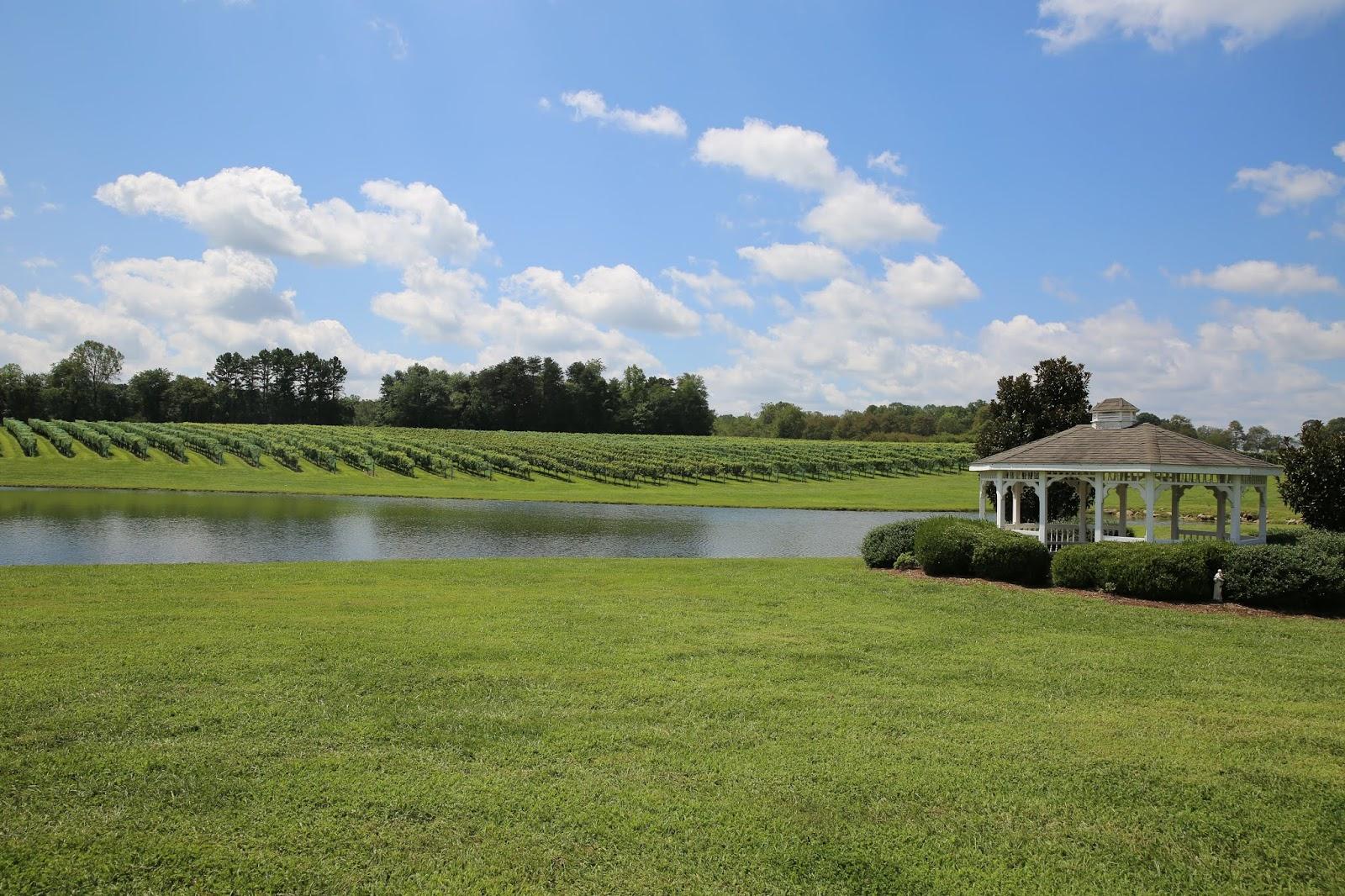 Shadow Springs Vineyards.JPG