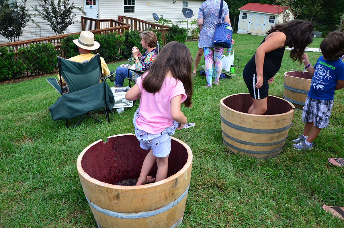 North Carolina Grape Stomp.JPG