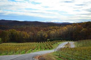 Point Lookout Vineyards Hendersonville-3.JPG