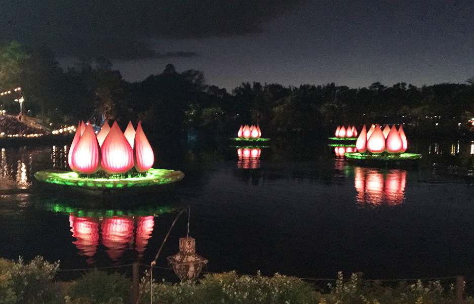 Disney Animal Kingdom Rivers of Light.jpg