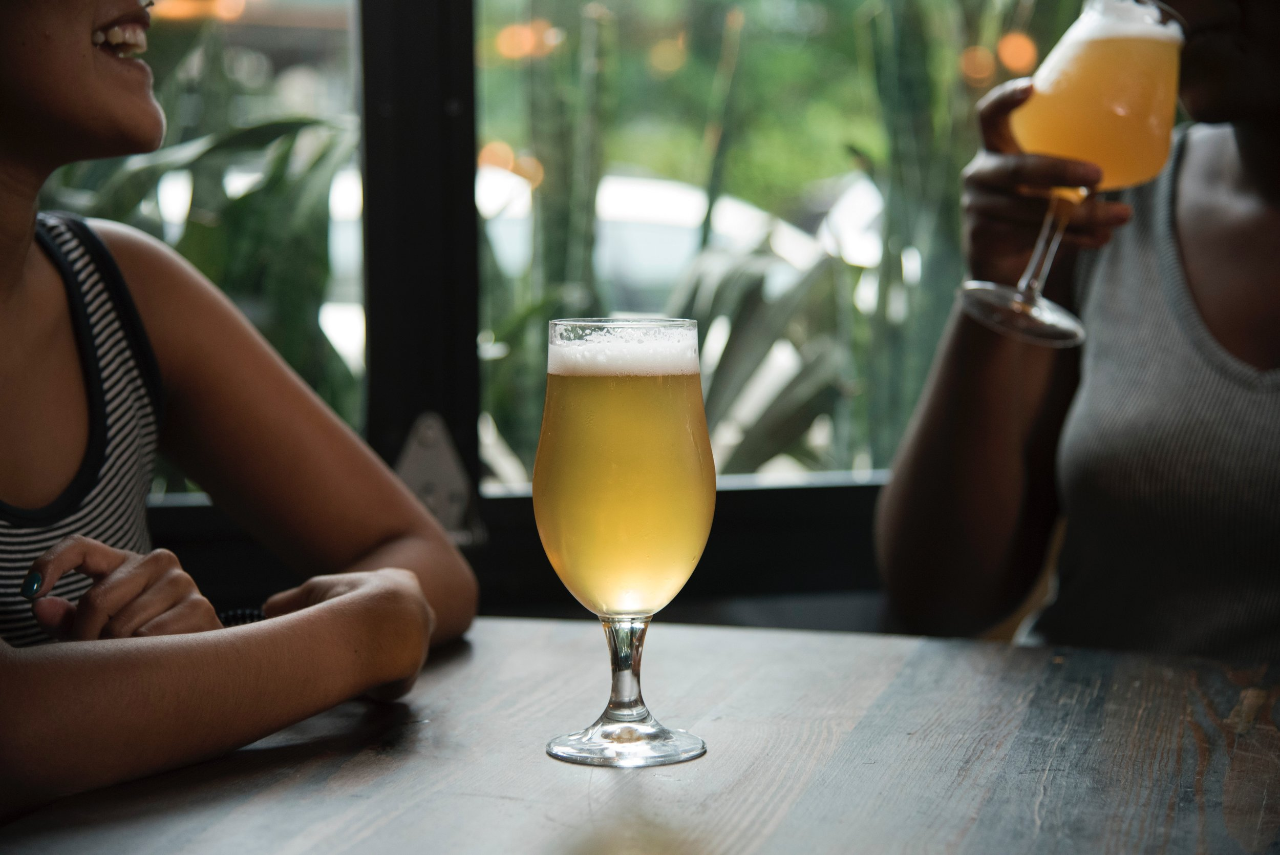 Top IPAs in North Carolina