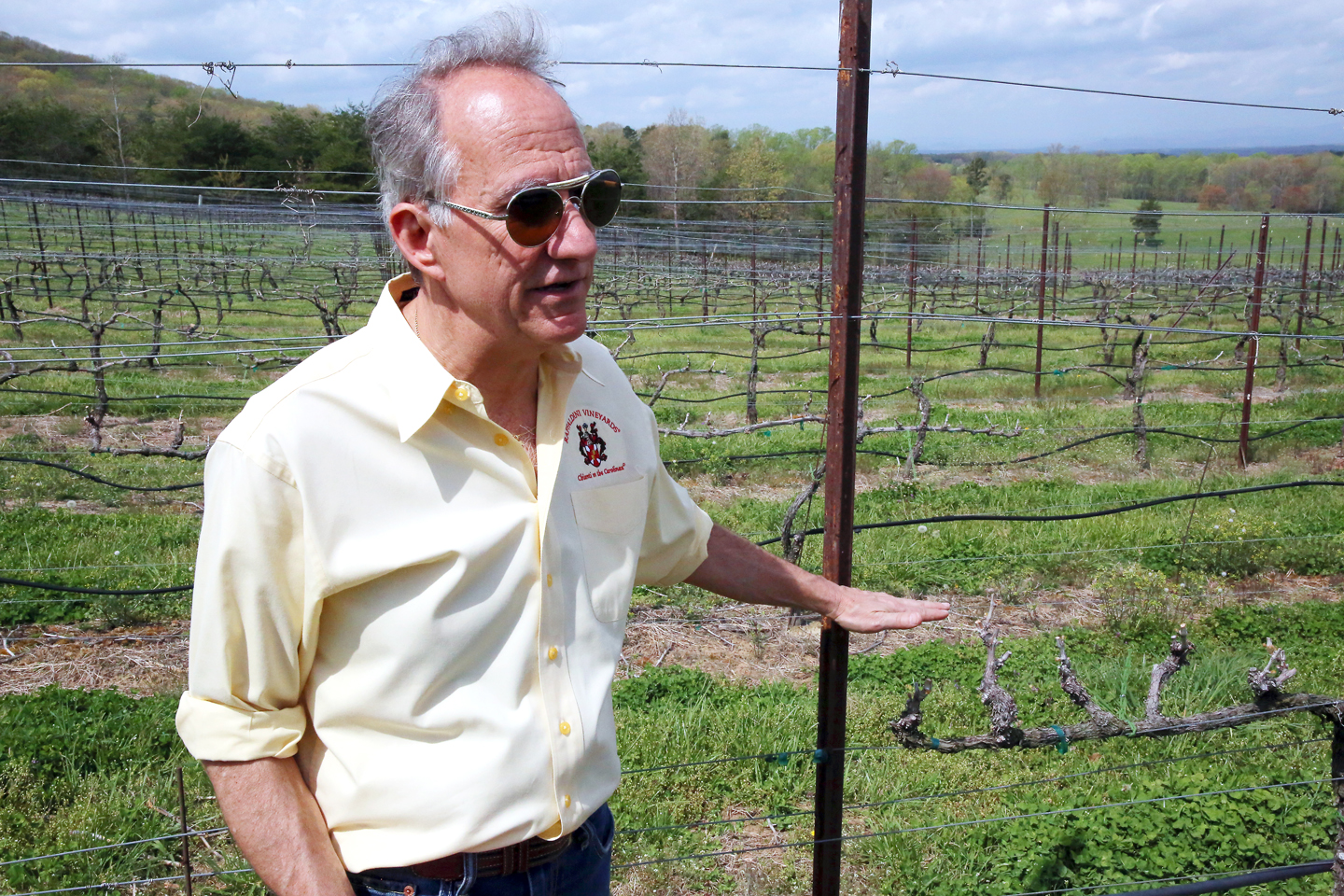 Jay Raffaldini, owner of Raffaldini Vineyards and president of the NC Fine Wines Society.