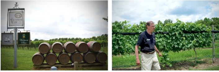 WilliamsburgWinery6.png