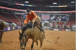 Rodeo_2.png