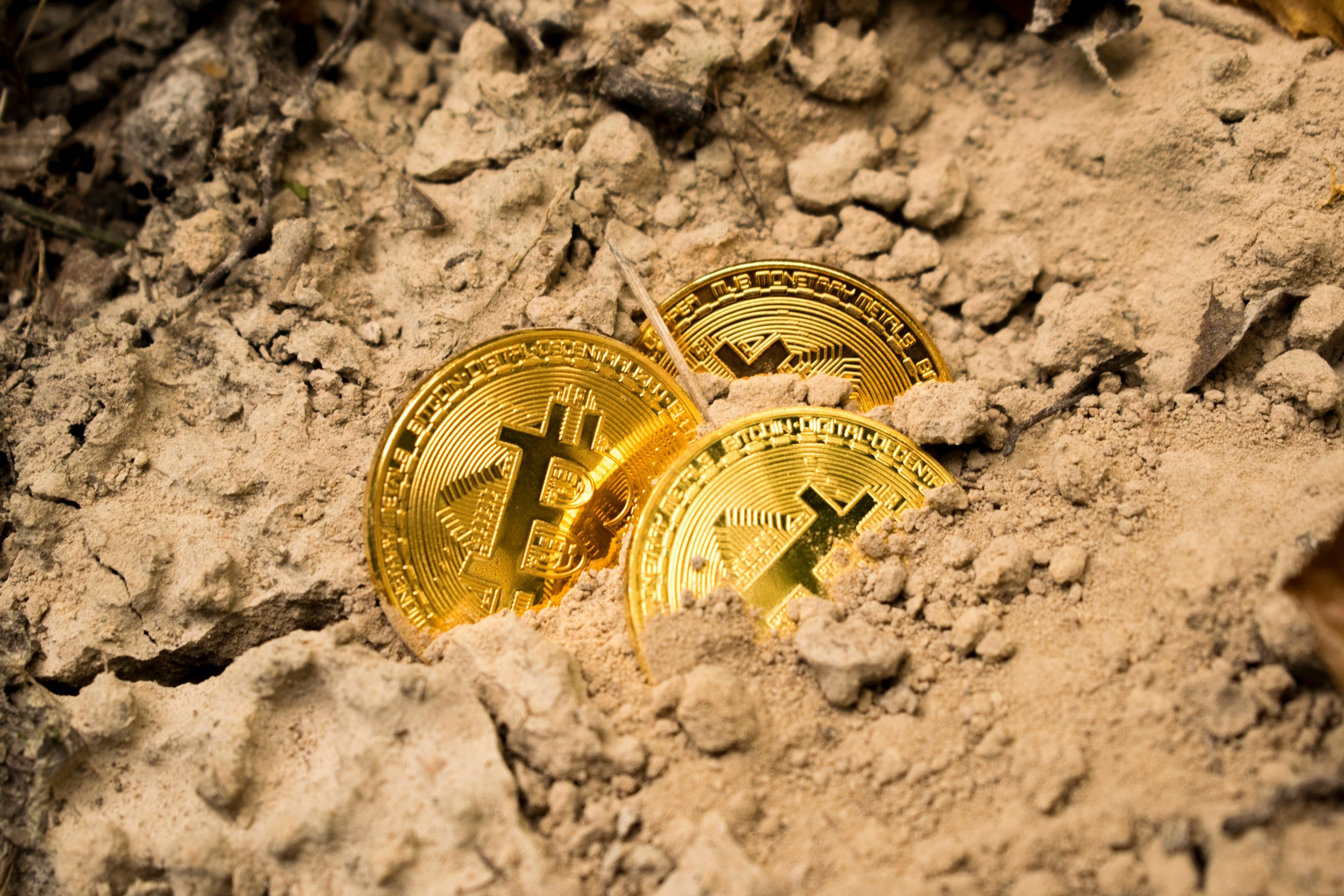 How to Invest in Cryptocurrency Adams Consulting LLC