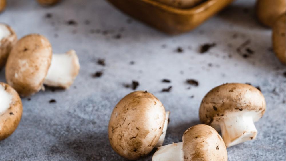 bruine champignons met een beetje aarde liggend op een grijs witte achtergrond