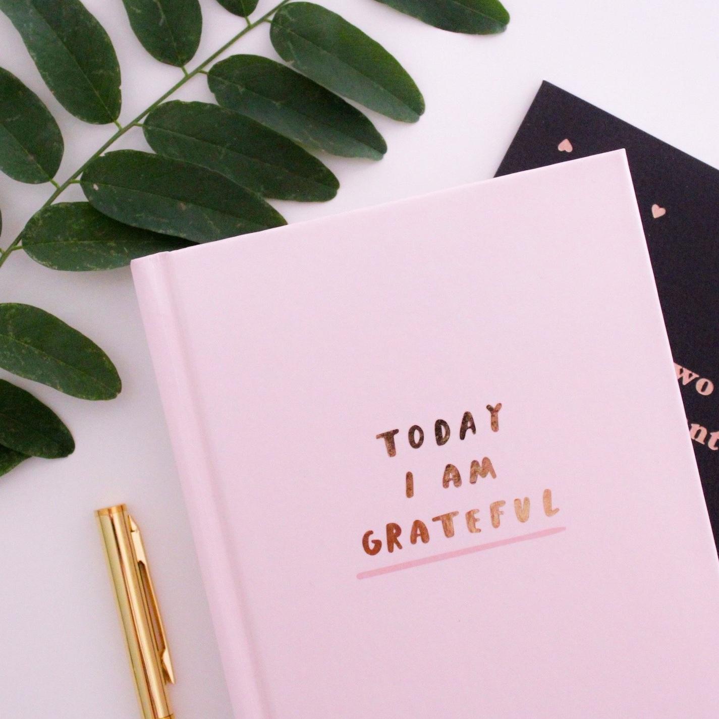 Gratitude%2Bjournal.jpg