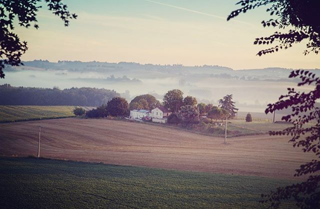 A misty morning @domaine_de_rambeau captured by one of our lovely guests 😊 #ruralfrance #holidays #escapethecity #luxuryholidays #peaceful #dawn