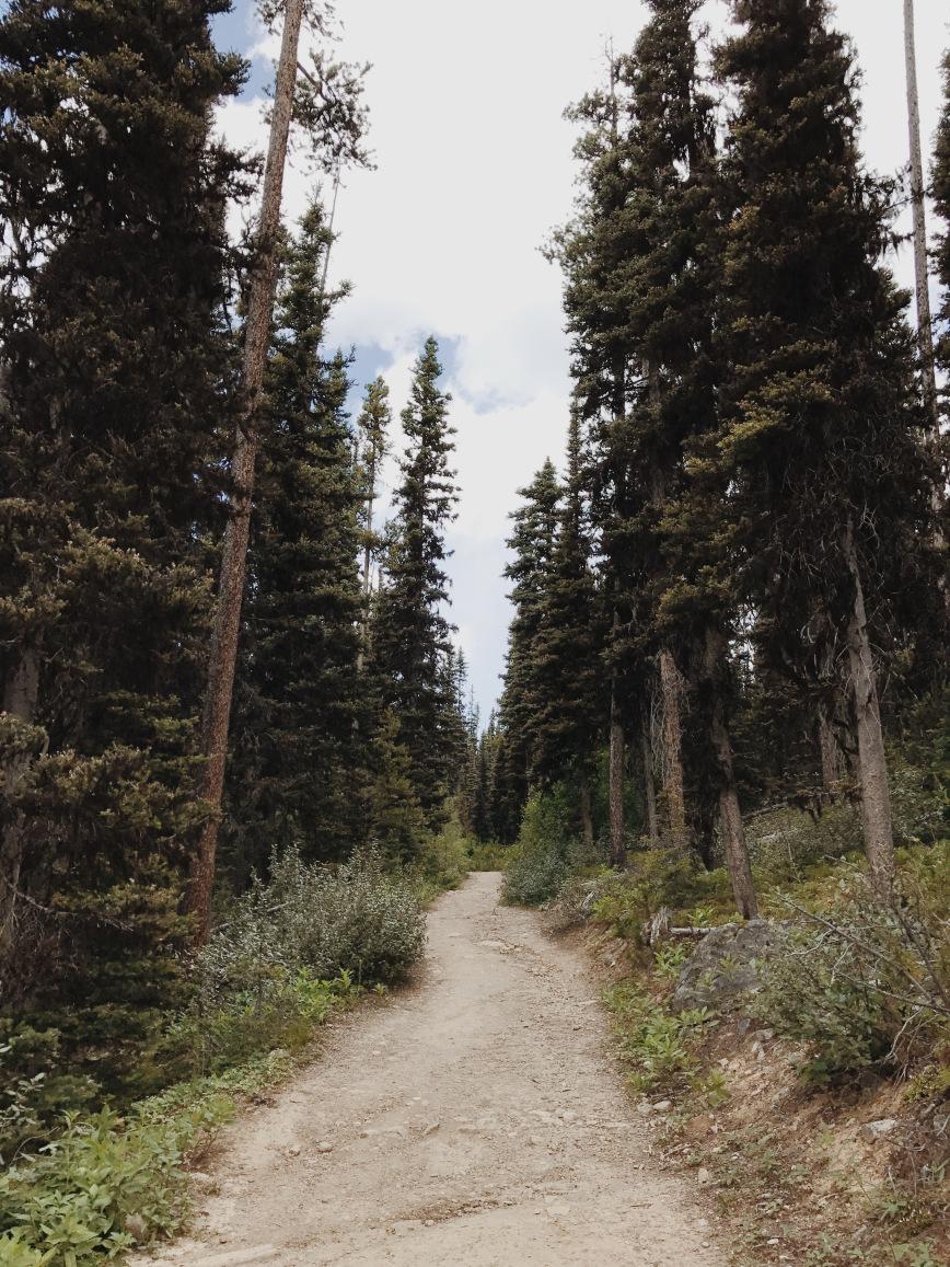 The path to Boom Lake