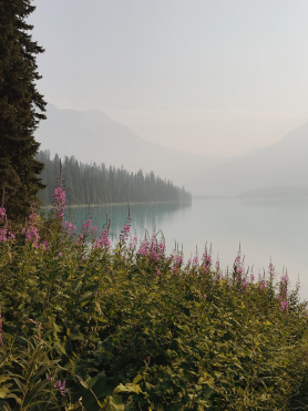 The beginning of the hike at Emerald Lake