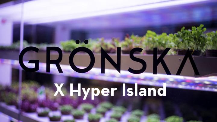 GRÖNSKA_Presentation200519.001.jpeg