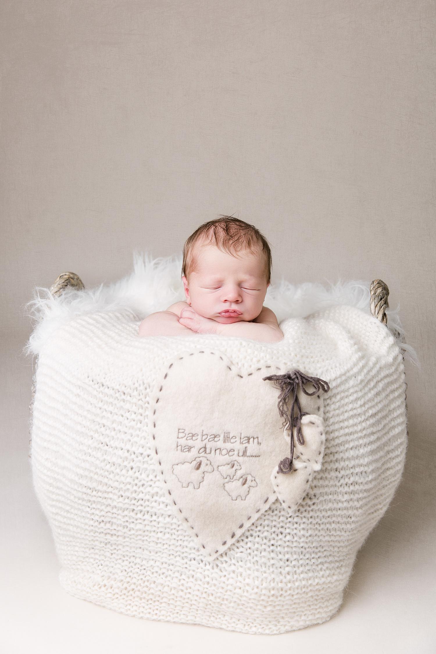 nyfødtfotografering_nyfødtfotograf_©Ann-sissel-holthe_Bildet får IKKE brukes av andre enn fotografen_fotograf_fatmonkey_bærumsverk__0389.jpg