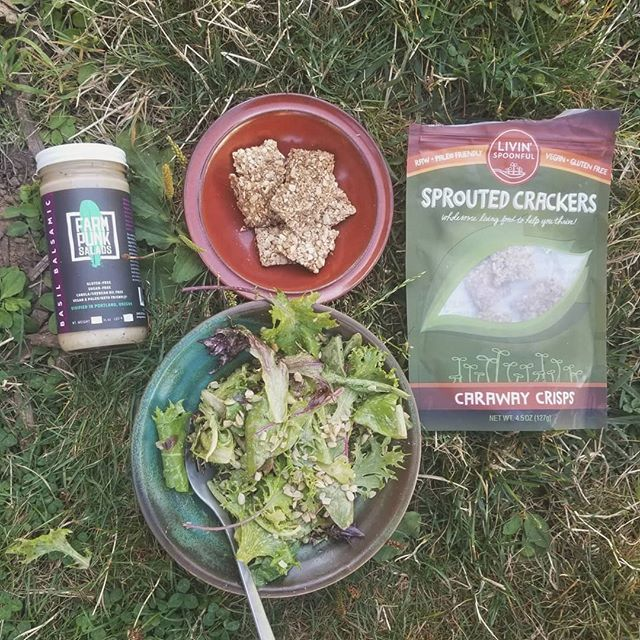 With these long farm days in our full harvest season, having quick easy meals has been key to our survival. Our good friends @livinspoonful_ have us a bag of their delicious caraway crackers to enjoy. Having that crunch to add protein and texture with our salad was awesome. All sprouted and organic, definitely try these crackers if you haven't! . . . #livinspoonful #sproutedseeds #veganprotein #farmpunksalads #farmpunk #portlandfarmersmarket #Woodlawnfarmersmarket #handtended #smallscalefarming #youngfarmers #portlandcsa #pdxfarms #pdxfoodie #pdxeats #eatlocalpdx #portlandketo #pdxvegan