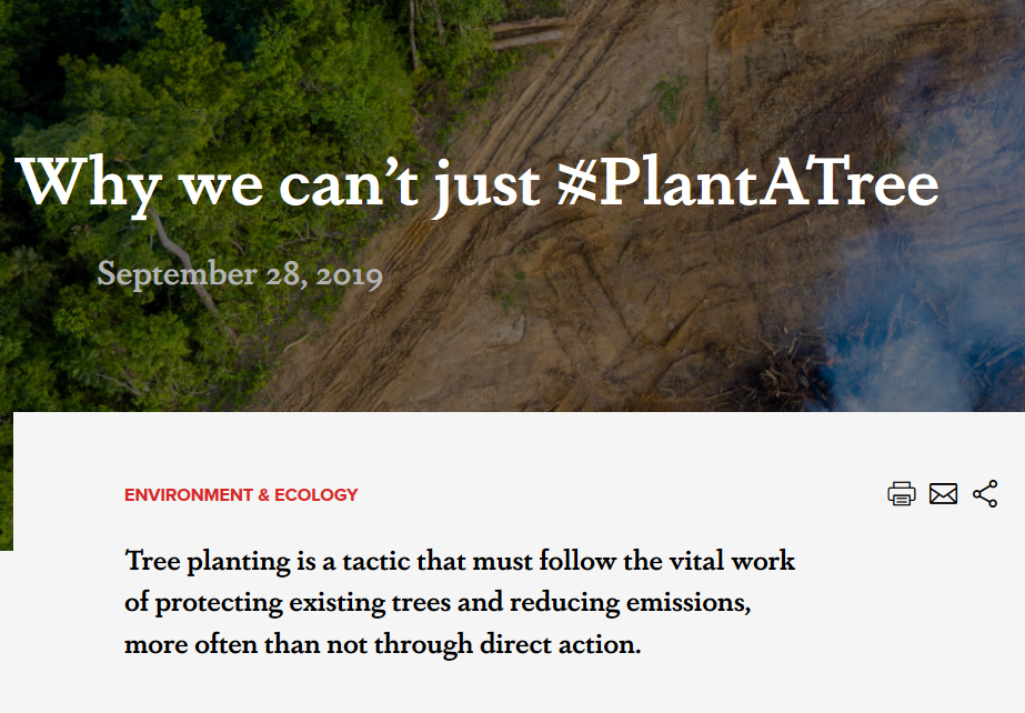 Why we can't just #PlantATree - September 28th 2019- Activist and Author Eleanor Goldfield exposes the critical and sinsiter details behind the mass tree plantation fad sweeping the globe.