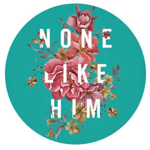 nonelikehim.png