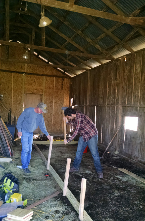 Randy+barn+in+progress.jpg