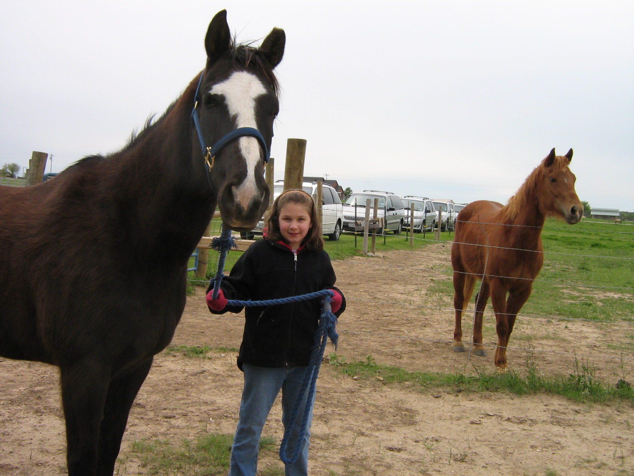 horse lessons cover.jpg