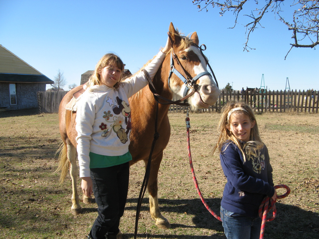horse day camp cover.jpg