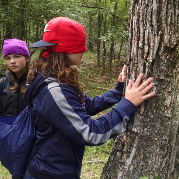 Using our sense of touch to connect with trees.