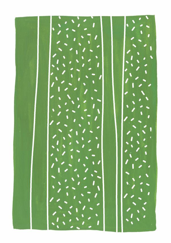 Cactus_MeganMcKean.jpg