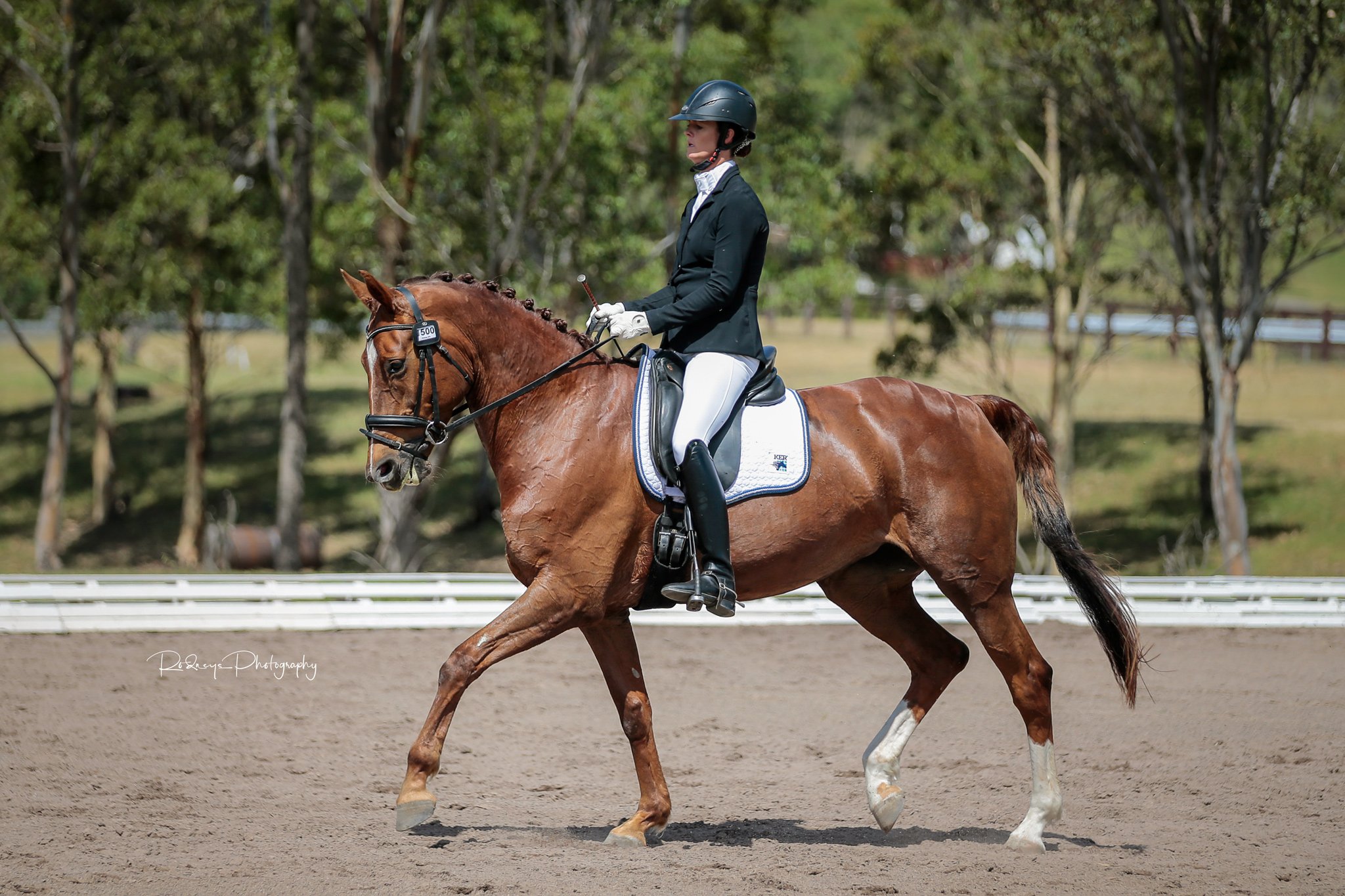 Alycia Targa and Fawnae TPH - OPEN Elementary Horse of the Year.jpg