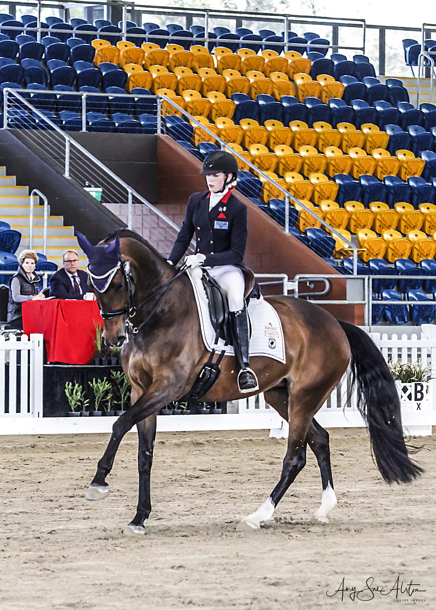Charlotte Waterman and Wisanne - OPEN FEI Horse of the Year.jpg