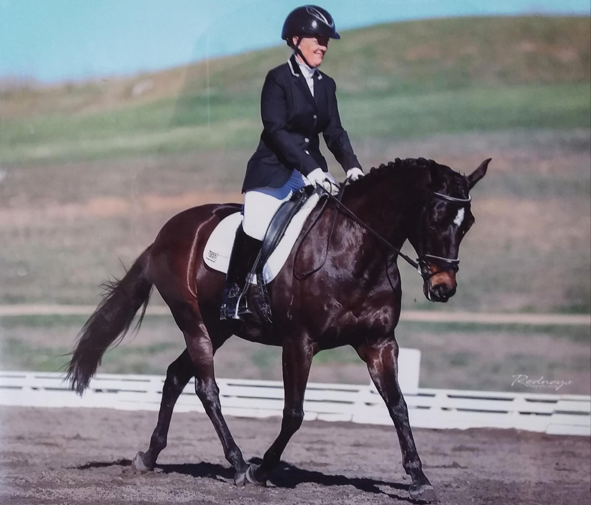 Jennifer wales Competing on Firstholm instyle at Sydney International Equestrian Centre
