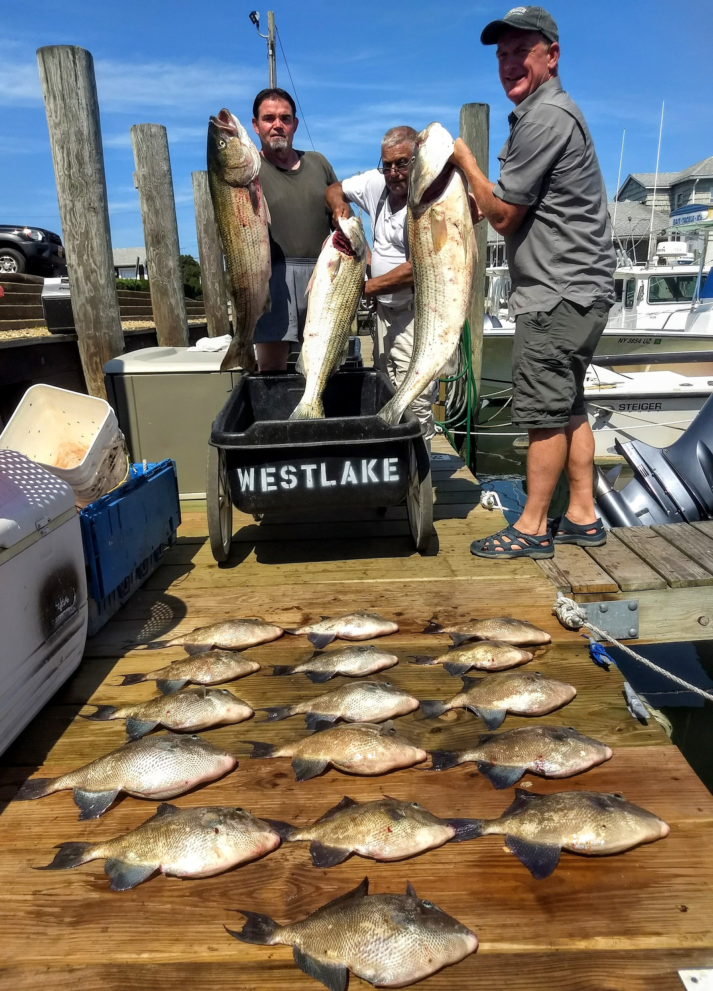 Full Day Inshore (Local/ Block Island and extended range)- -