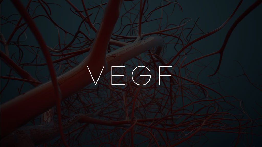 02 - Simultaneously, the stimulation increments the production of vascular endothelial growth factor (VEGF), enhancing the growth of new blood vessels