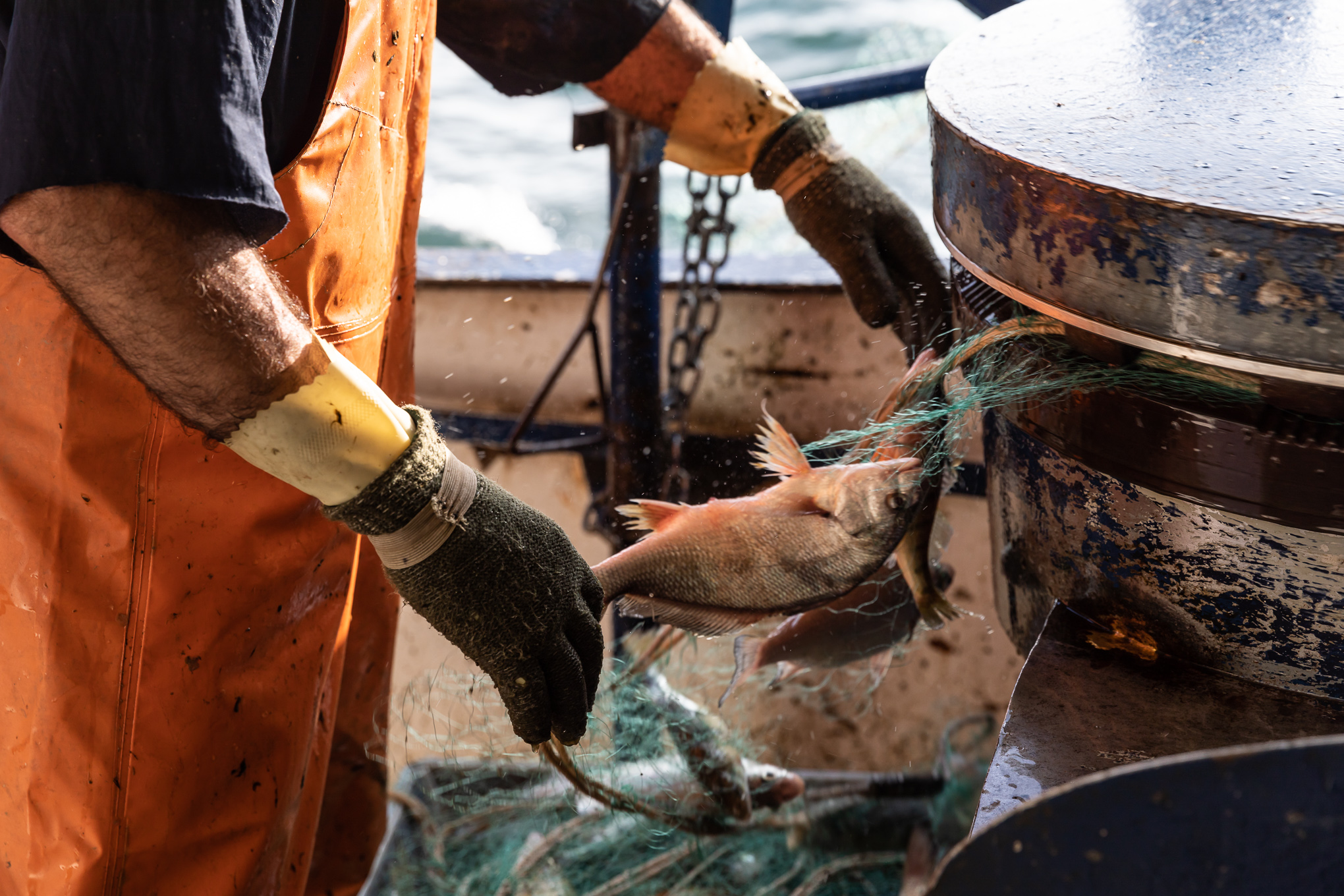 commercial fishing photography-2542.jpg