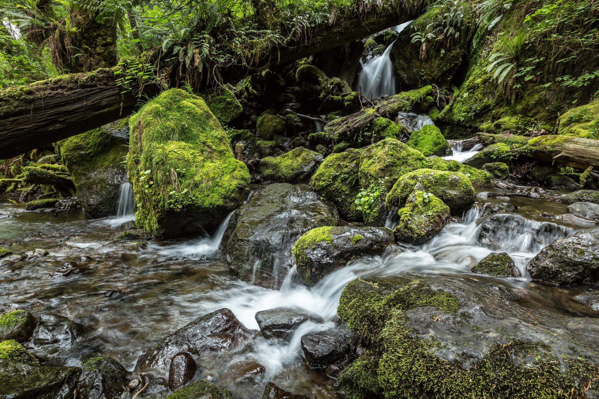 Merriman Falls-1350.jpg