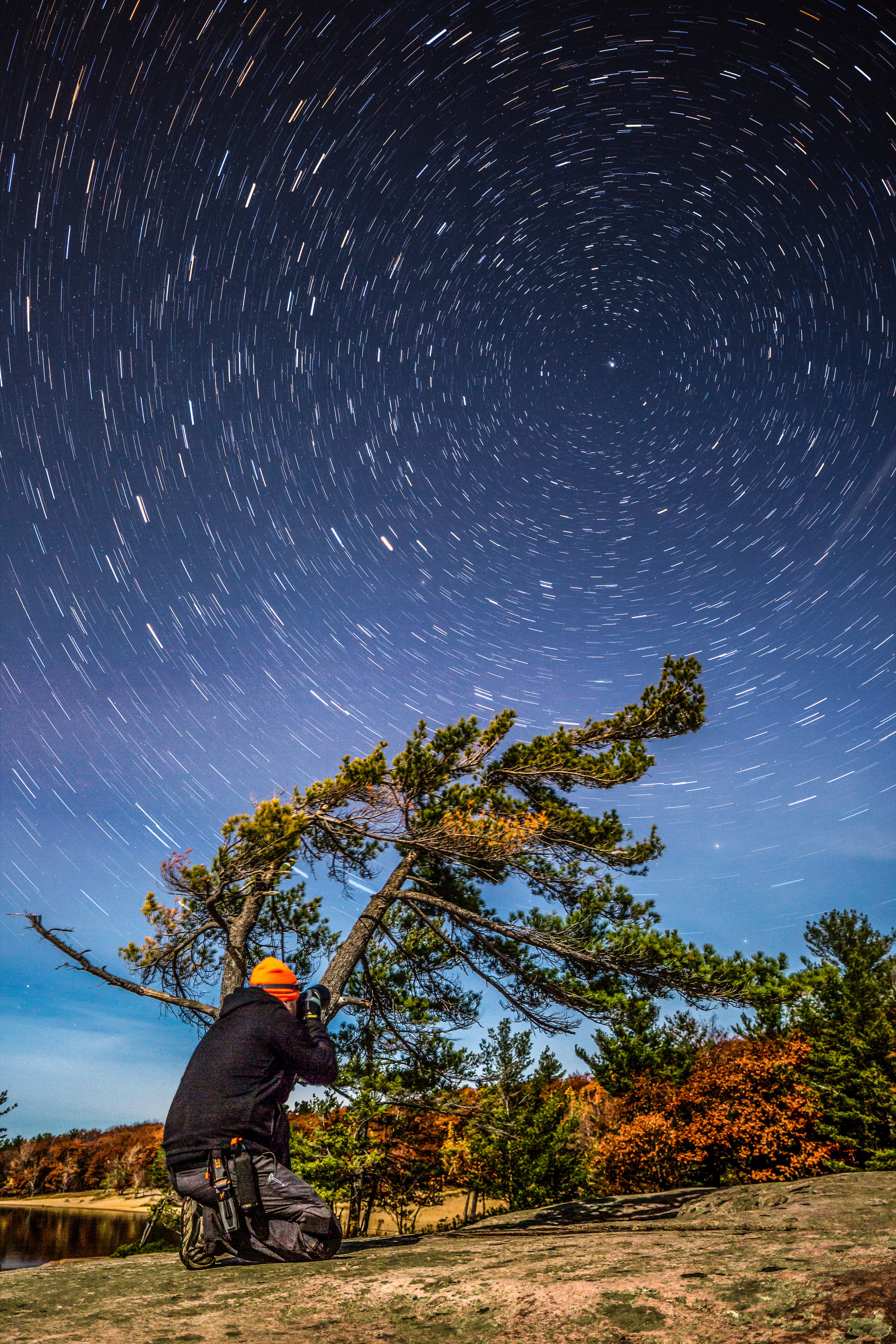Killbear Tree Star Trails-.jpg