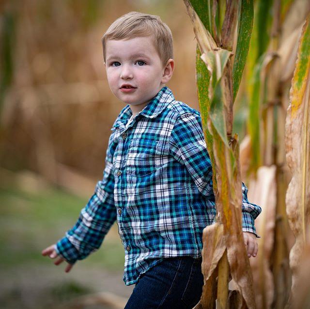 Lost in a maze. 🌽 • • • • • #fall #pumpkin #bokeh #farm #sigma #sony #nj #maze #bokehlicious #portraitphotography #farmlife #pumpkinspice #sigmalens #sonyalpha #newjersey #autumn #themazerunner #halloween #portraits #portraiture #farming #portraitpage #portraitmood #sonyimages #agriculture #pumpkins #babyhorse #bokehkillers #ponies #instahorses