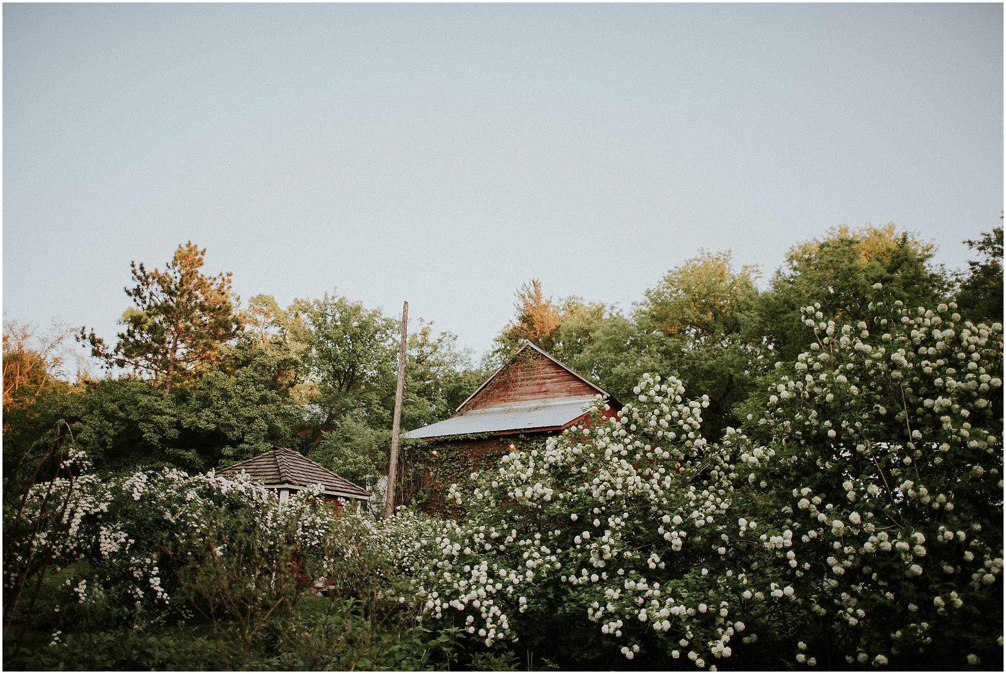 cn camrose hill_0075.jpg