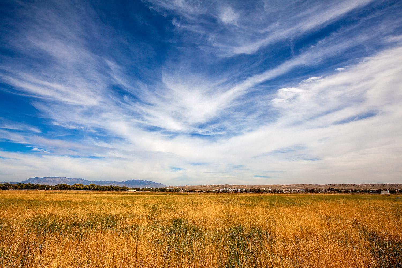 Valle_de_Oro_National_Wildlife_Refuge_Albuquerque_New_Mexico.jpg