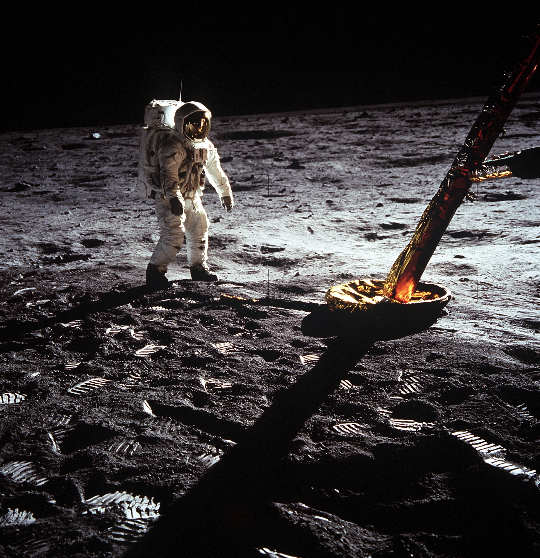 Our theme this summer is to celebrate the 50th anniversary of the Moon Landing!