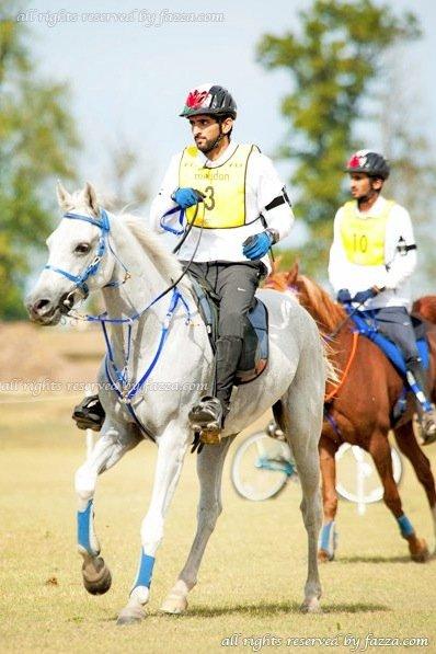 Pic 3_equestrian
