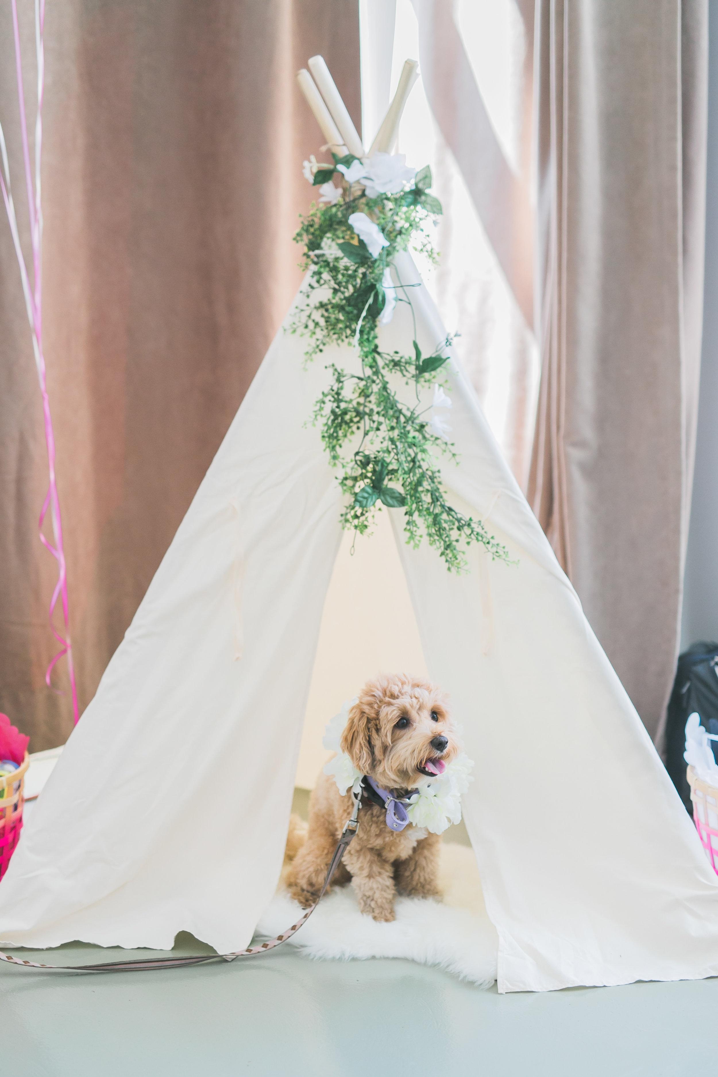 KD-Berkeley_FIeldhouse_Wedding_Photos-Rhythm_Photography-060