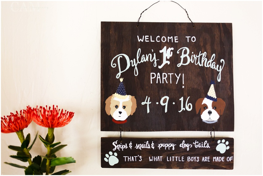 Dylan's First Birthday