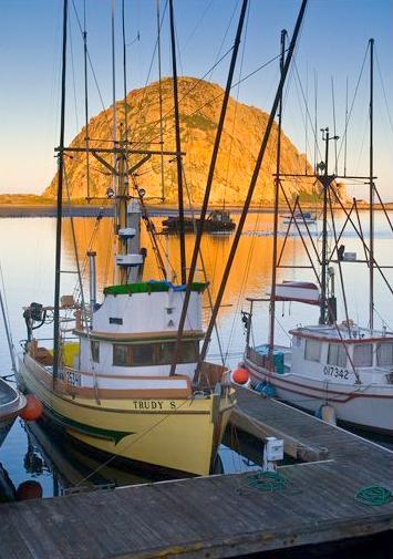morro-rock-enlightphoto-alliance-fisheries.jpg