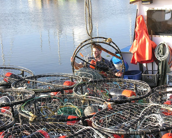 crabfishinggear-alliance-fisheries.jpg