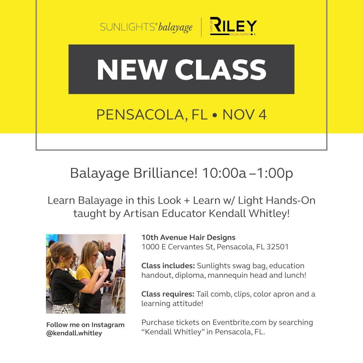 Pensacola Balayage Class