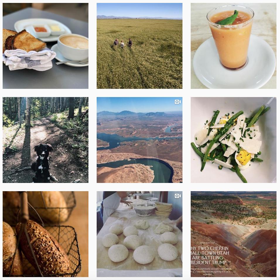 sarah-irvine-sage-bakehouse-instagram-curation-content-creator-santa-fe.png