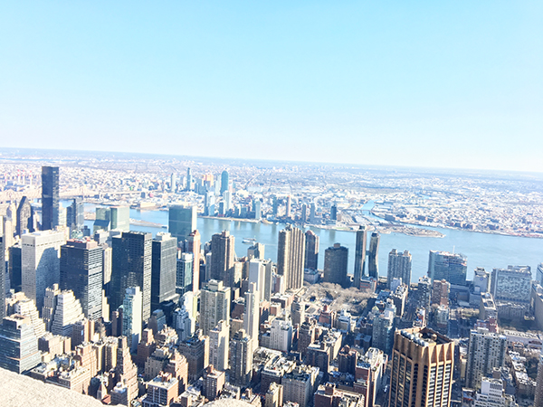 View-from-the-Empire-State-Building-by-Live-the-Movies.jpg