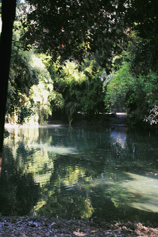The-Bluebell-pond-from-Hart-of-Dixie-photo-by-Live-the-Movies.jpg