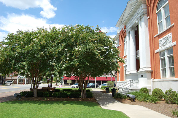 Bulloch-County-Courthouse-from-Now-and-Then-by-Live-the-Movies-5.jpg