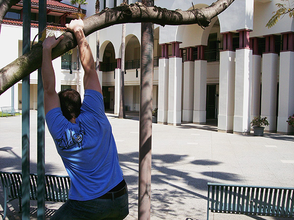 Hanging-from-tree-at-Culver-City-Hall-from-Arrested-Development-by-Live-the-Movies.jpg