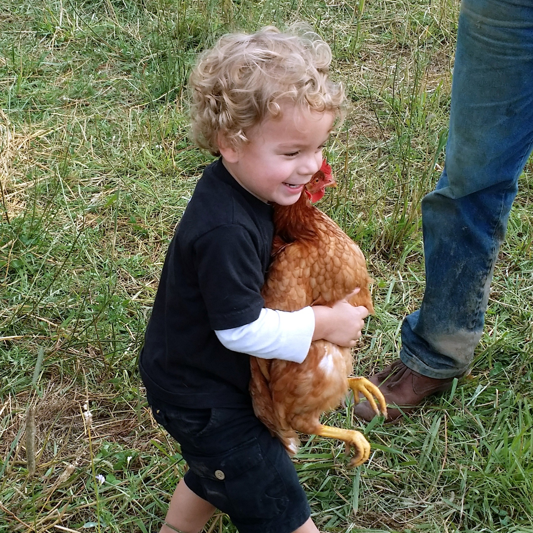 Farm visitor.